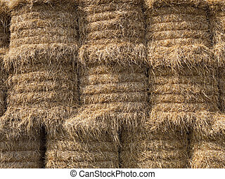 stacked sraw bales