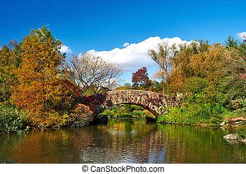 stad, centraal park, herfst, york, nieuw