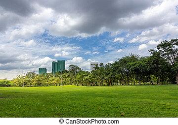 stadt, gebäude, himmelsgewölbe, park, gegen, feld, grün, bewölkt , gras