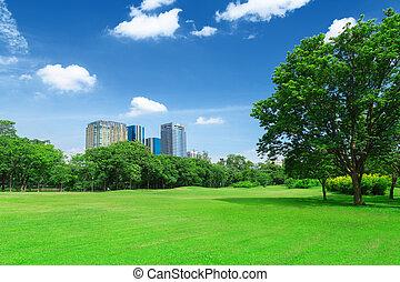 stadt, parkanlagen & naturparks, rasen