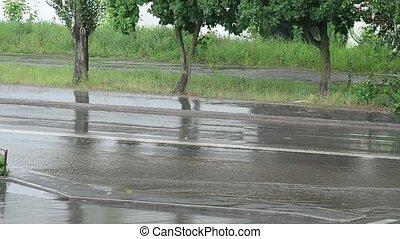 stadt- straße, unter, schwerer regen, in, sommer, mit, nein,...