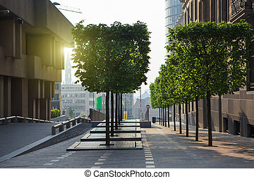 stadtstraße, sonnenuntergang, zentrieren, brüssel