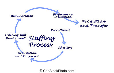 Staffing Process - Steps for Management, Benefits, Questions and Videos