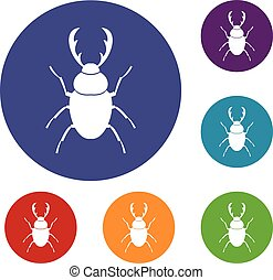 Stag beetle icons set in flat circle reb, blue and green color for web