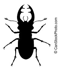 Stag beetle - Vector illustration of stag beetle silhouette
