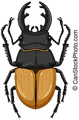 Stag beetle isolated on white background illustration