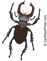 Stag Beetle. The illustration on a white background