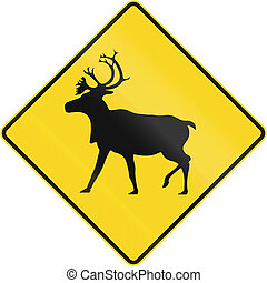 Stag Crossing In Canada