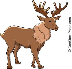 Stag Vector Illustration