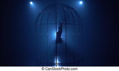 Stage performance of an aerial gymnast on a hoop in a cage on the stage . Blue smoke background. Silhouette. Slow motion