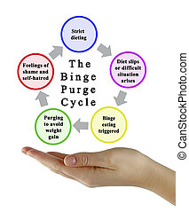 Stages of Binge Purge Cycle