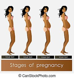 Stages of Pregnancy beautiful girl