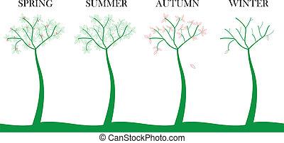 stagione, albero
