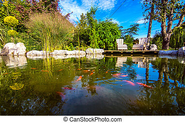 Giardino lussureggiante : Bello giardino lussureggiante sole terreno boscoso foto