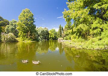 Botanico riflessione estonia natura tartu stagno for Stagno in giardino