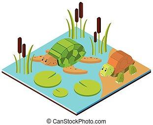 Stagno scena illustrazione for Stagno per tartarughe