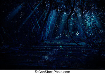 Stair in night forest