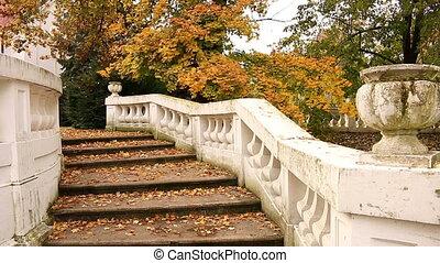 staircase with fallen leaves autumn season