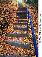 Stairs covered with autumn leaves