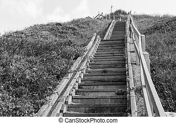 Stairs Hillside Black White