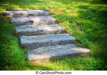 Stairs in the garden of gray stone. Texture or background