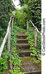 Stairs on the hiking trail through the forest