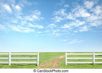 staket, blåttsky, gräs, gröna vita