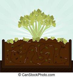 Stalk of celery and compost - Stalk of celery. Composting...