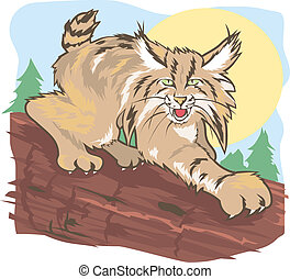 Stalking Lynx - A large cat on the trail of its prey