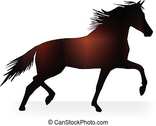 Stallion beautiful horse logo