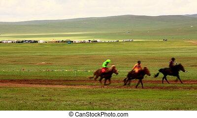 Stallion Horse Race 2013 Finals, Mongolia - Stallion Horse...