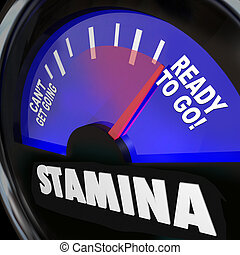Stamina Fuel Gauge Drive Power Energy Increase - The word...