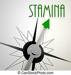 Stamina on green compass