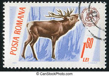 stamp Deer