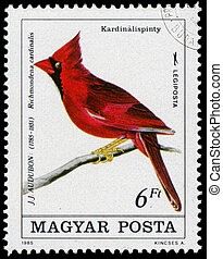 Stamp printed in Hungary shows common cardinal - HUNGARY - ...