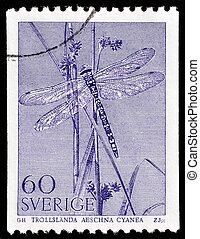 SWEDEN - CIRCA 1979: A stamp printed by SWEDEN shows The Southern Hawker or Blue Hawker (Aeshna cyanea) - 70 millimetres (2.8 in) long species of hawker dragonfly, circa 1979