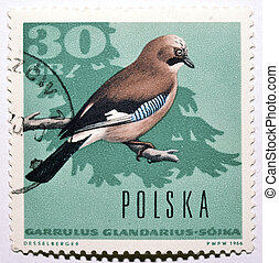 Stamp with Eurasian Jay