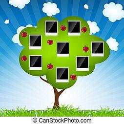 stamträd, vektor, illustration