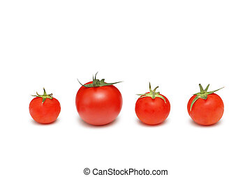 ""\""""Stand out from the crowd""""  concept with tomatoes""361|254|?|en|2|a71fd8bb8ae2168c063fc462303c3f48|False|UNSURE|0.3177243173122406
