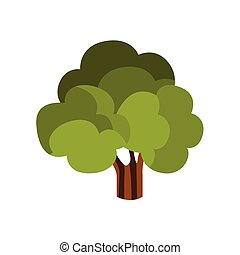 Standalone Large Tree With Green Crown, Camping And Hiking ...