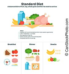 Standard food diet vector flat illustrations. A balanced...