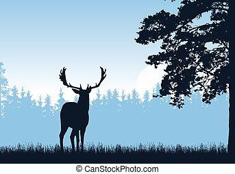 standing, blu, sky., albero., testo, spazio, -, illustrazione, alto, cervo, vettore, foresta, realistico, sotto, erba