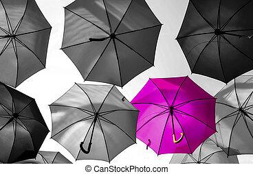 standing, corvo, ombrello, fuori