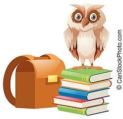 standing, gufo, libri, pila