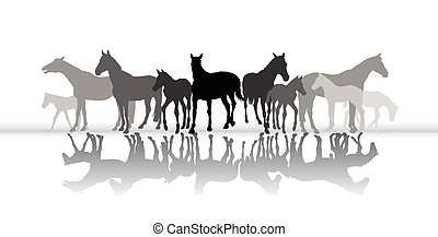 Standing horses silhouette with reflection
