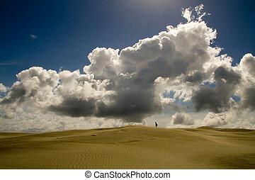 standing, in, il, deserto