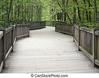 wooden bridge