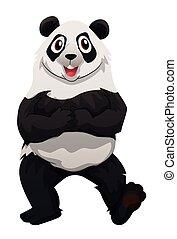 standing, piedi, panda, due