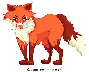 standing, volpe bianca, sfondo rosso
