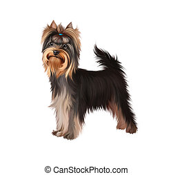 Standing Yorkshire Terrier. Isolated illustration on white...